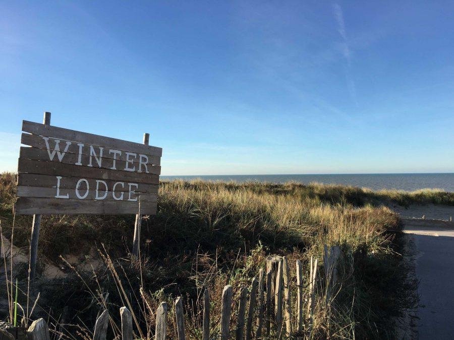 Winterrogge Noordwijk strand