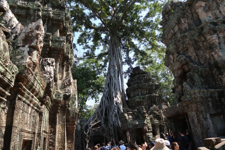 anker cambodia